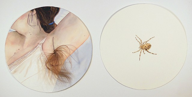 Untitled (hair & spider)