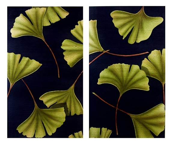 Gingko 1 and 2
