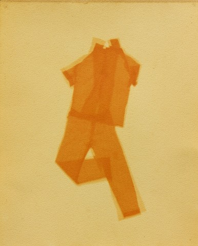 Anthotype made using yellow onionskin