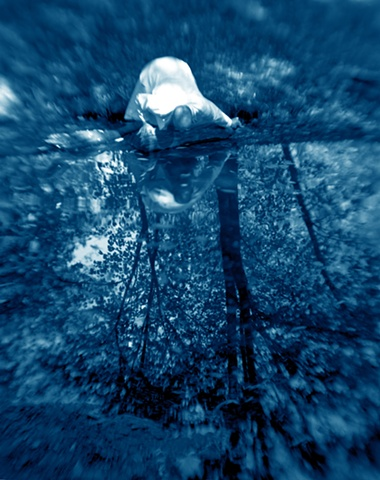 Cyanotype Print, a historical and alternative photographic process from a film negative.