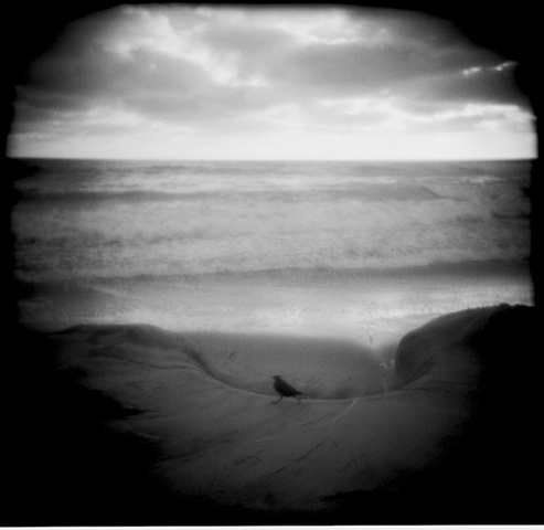 Toy camera image (Holga) printed on silver gelatin paper