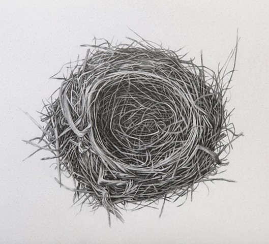 Untitled (Nest)
