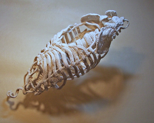 Mixed media sculpture of ribcage and spinal cord.