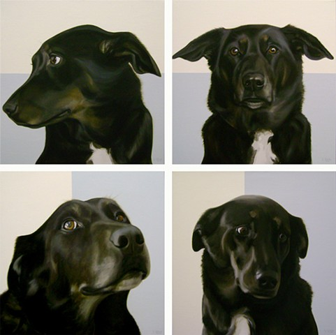 IN THE RUFF (IN MEMORY OF RUBY) POLYPTYCH