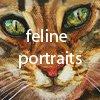 feline portraits