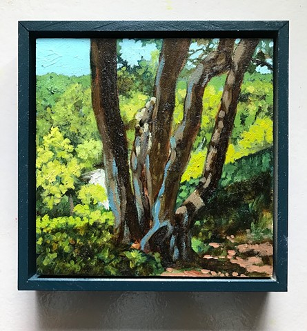 plein air painting matt lively