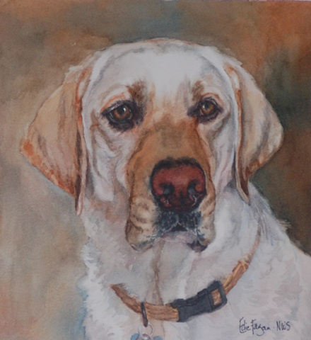 watercolor dog portrait by Edie Fagan Adored Dogs watercolor painting of dog watercolor painting of Labrador Retriever