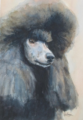 Edie Fagan Adored Dogs watercolor portrait of dog watercolor painting of standard black poodle show dog