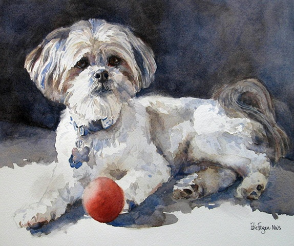 Edie Fagan Adored Dogs watercolor portrait of dog watercolor painting of mix breed dog shih tzu llasso apso