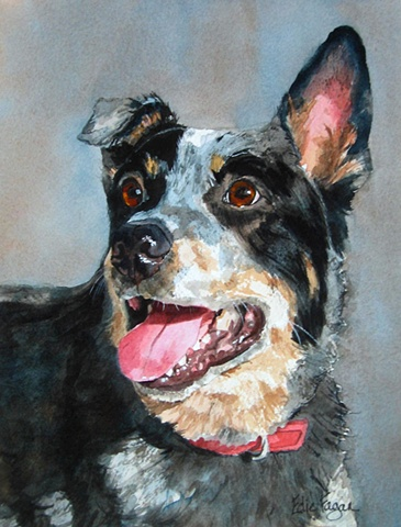 Edie Fagan Adored Dogs watercolor portrait of dog watercolor painting of Australian Cattledog cattle dog