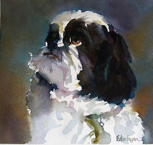 Edie Fagan Adored Dogs watercolor portrait of dog watercolor painting of shih tzu dog