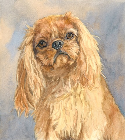 Ruby Cavalier King Charles Spaniel watercolor painting by Edie Fagan Adored Dogs