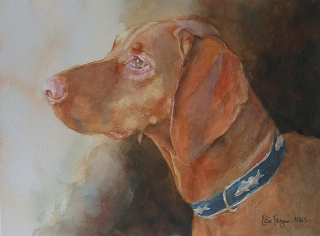Edie Fagan Adored Dogs watercolor portrait of dog watercolor painting of Vizsla Hungarian dog