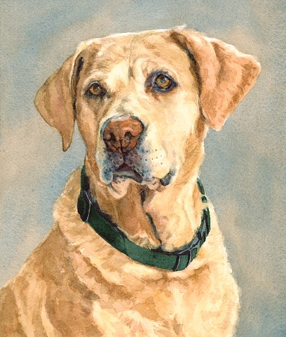 Yellow Lab Labradore Retriever by Edie Fagan Adored Dogs