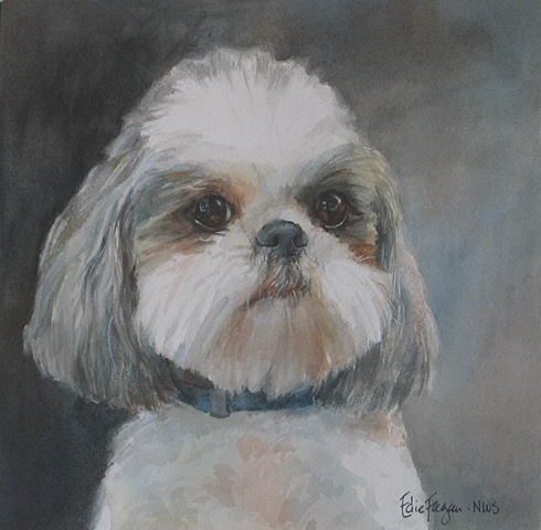Edie Fagan Adored Dogs watercolor portrait of dog watercolor painting of Shih tzu