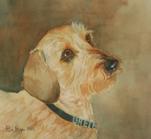 wire haired dachshund watercolor painting by Edie Fagan