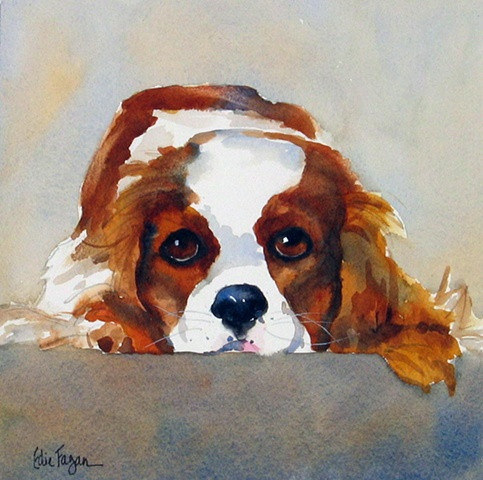 watercolor dog portrait by Edie Fagan Adored Dogs watercolor painting of  dog watercolor painting of Cavalier King Charles Spaniel dog