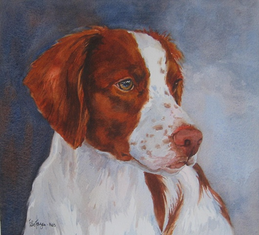 Edie Fagan Adored Dogs watercolor painting of dog watercolor painting of Brittany spaniel dog