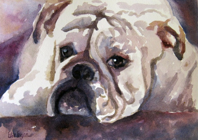 Edie Fagan Adored Dogs watercolor portrait of dog English Bull Dog painting bulldog