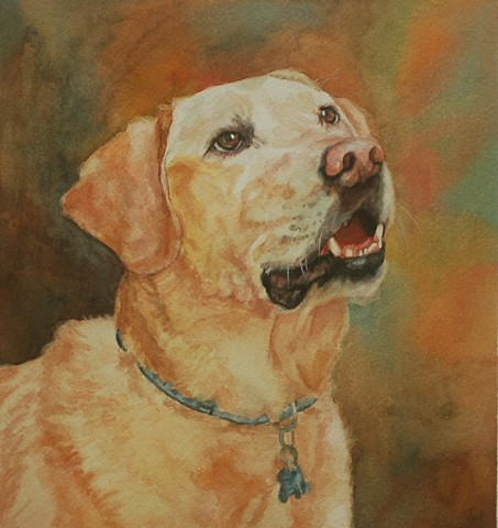 Lab Labrador retriever watercolor dog portrait by Edie Fagan