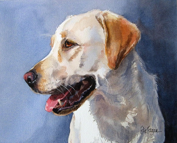 watercolor dog portrait of Labrador Retriever by Edie Fagan Adored Dogs painting