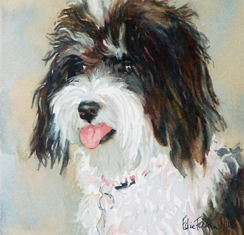 Edie Fagan Adored Dogs watercolor portrait of dog watercolor painting of schnoodle dog black and white