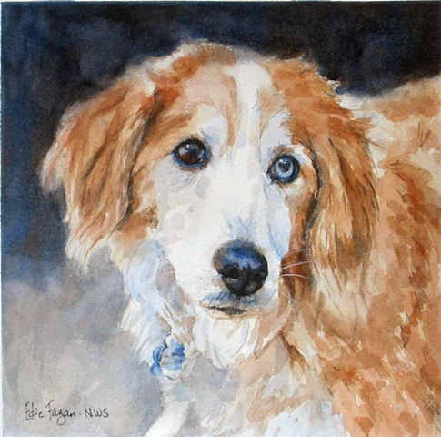 Edie Fagan Adored Dogs watercolor portrait of dog watercolor painting of border collie mix