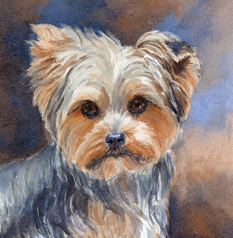 watercolor dog portrait of Yorkie by Edie Fagan Adored Dogs painting Yorkshire terrier