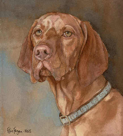 Edie Fagan Adored Dogs watercolor portrait of dog watercolor painting of Vizsla Hungarian brown dog