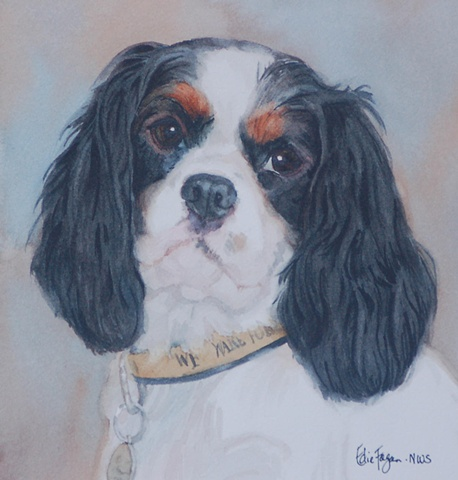 Edie Fagan Adored Dogs watercolor portrait of dog watercolor painting of Cavalier King Charles spaniel tricolor dog