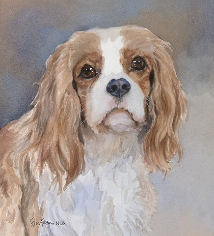 Spaniel dog Blenheim watercolor dog portrait of Cavalier King Charles Spaniel by Edie Fagan Adored Dogs painting