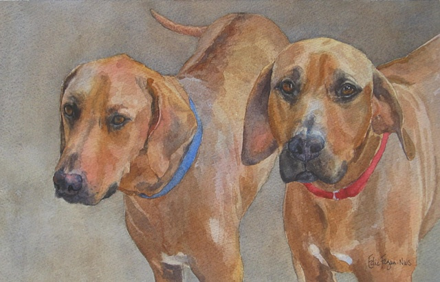 watercolor painting of Rhodesian ridgeback dogs