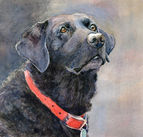 Black Labrador, Lab, watercolor painting by Edie Fagan Adored Dogs