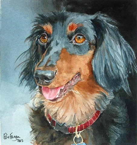 Edie Fagan Adored Dogs watercolor portrait of dog watercolor painting of longhaired dachshund long-haired
