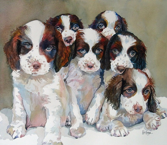 watercolor painting of English springer spaniel puppies litter of puppies