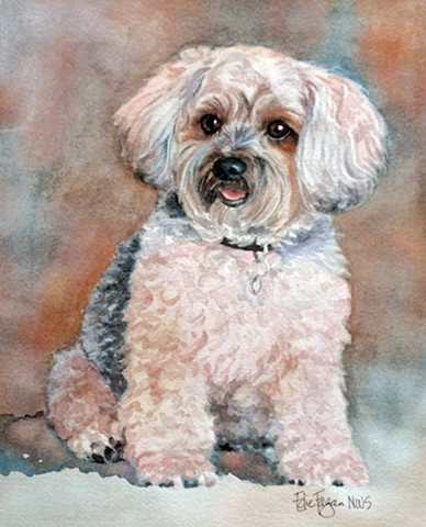 Watercolor painting of Yorkiepoo by Edie Fagan