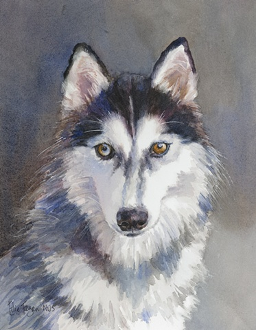 Edie Fagan Adored Dogs watercolor painting of dog watercolor painting of Siberian husky dog