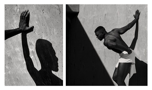Shadow Work, Diptych