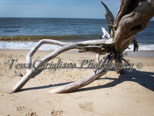 Higbee's beach 3