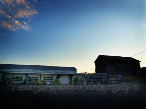 Jenkin-Lueken's Farm