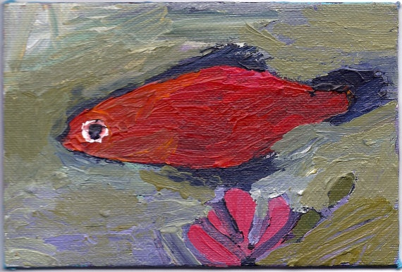 orange, fish, small, goldfish, mollie, pet, pet fish, ooak, original, tiny, little, painting, art, rochester, ny, artist, bright, impressionist, expressionist, contemporary, artwork