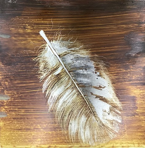 Feather gold 1