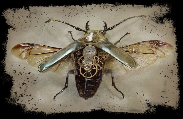 Lovely Gold Stag Beetle - Modified Mechanical, Insect, Bugs, Gears, Steampunk, Steam Punk by Lindsey Bessanson