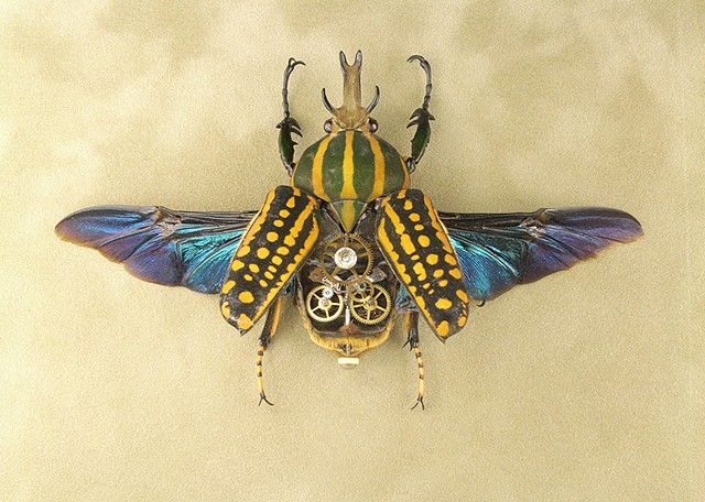 Yellow and Green Stag Beetle with multiple layered gears.  Bling Gears, multiple LED's large square gold frame.