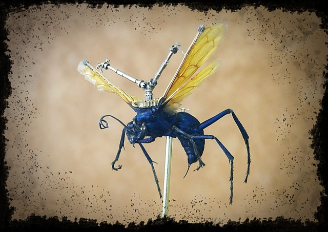 Huge Tarantual Hawk Wasp with Gears Mechanical, Insect, Bugs, Gears, Steampunk, Steam Punk by Lindsey Bessanson