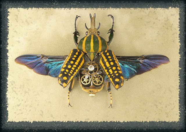 Yellow, Green, Stag Beetle, Gears, Steampunk, Steam Punk, Insect, Bug, of Lindsey Bessanson, by Lindsey Bessanson