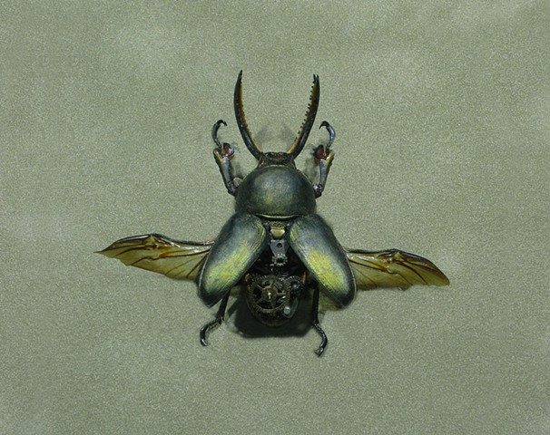 Smokey Green and blue Steampunk Beetle Insect Stag Beetle Steam Punk by Lindsey Bessanson
