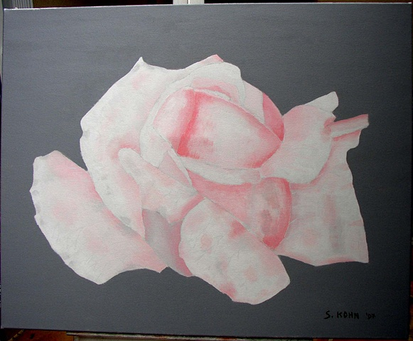 Pink Rose on Gray