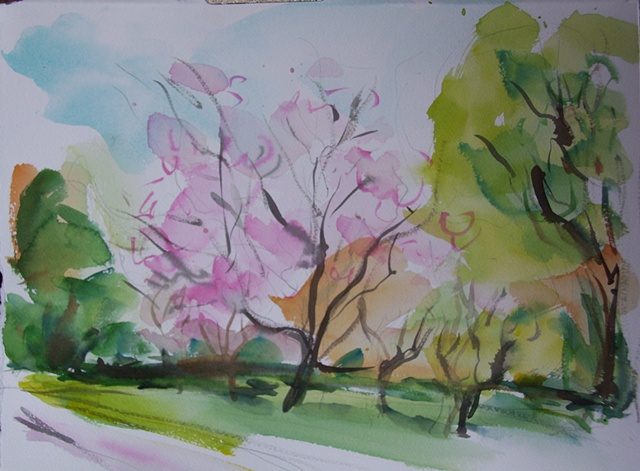 Spring in the Arboretum