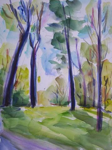 A Walk in the Arboretum 2